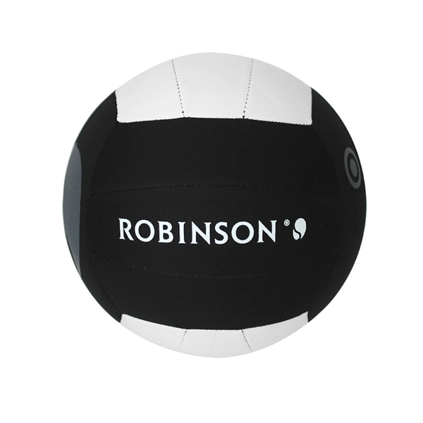 Picture of Beachball